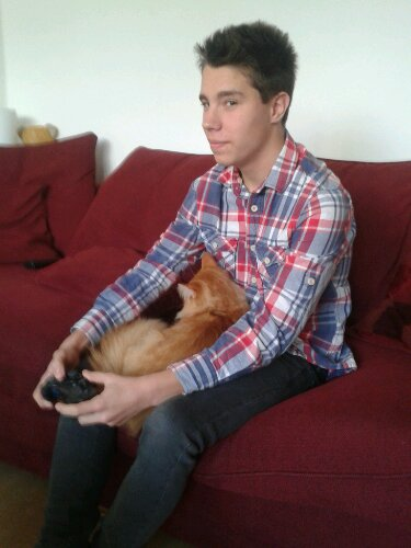 Fifa 13 is harder to play with a cat in your lap